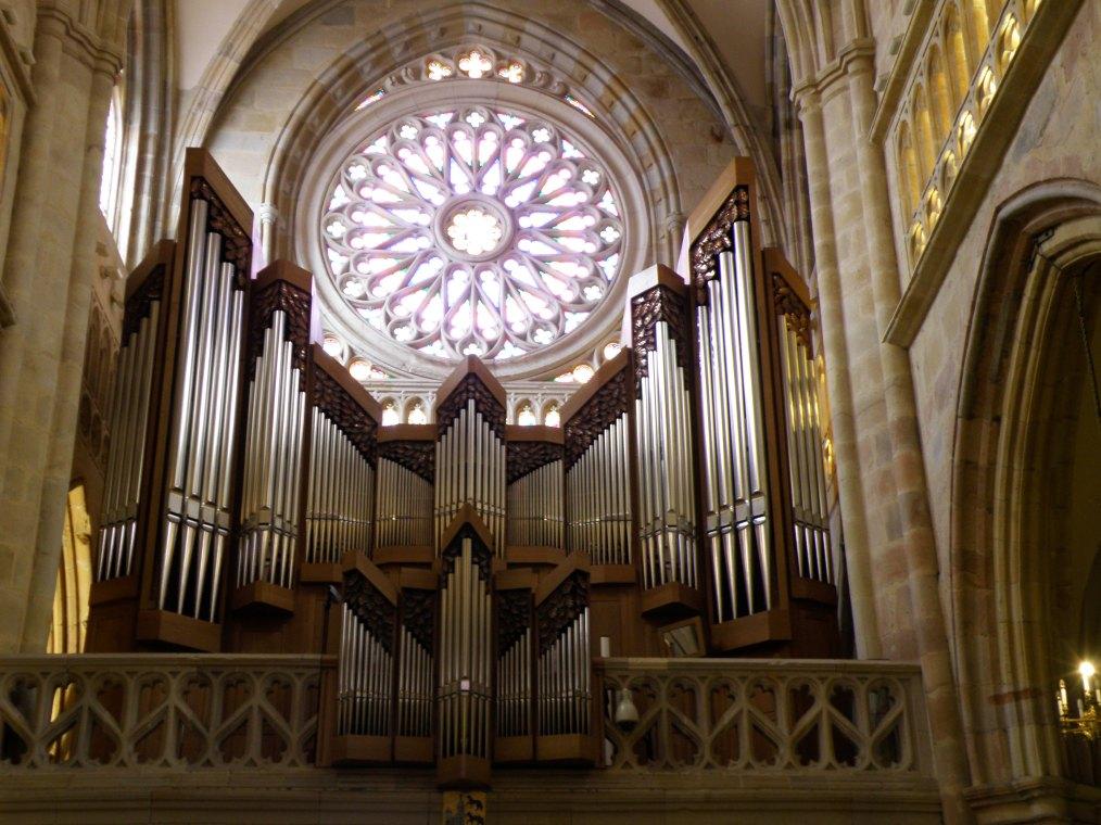 Órgao da Catedral