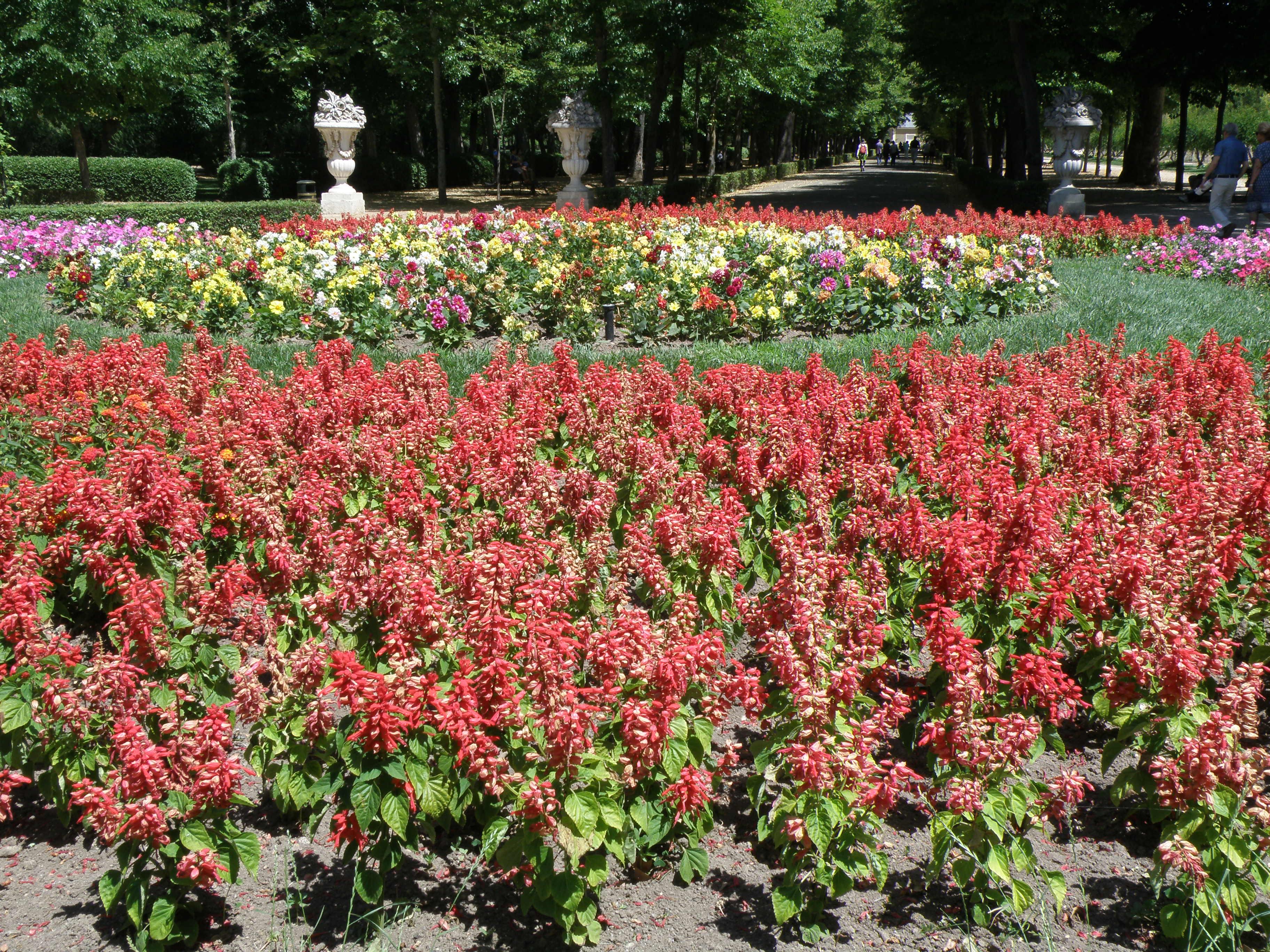 Estanque de los chinescos um brasileiro na espanha for Jardin o jardin
